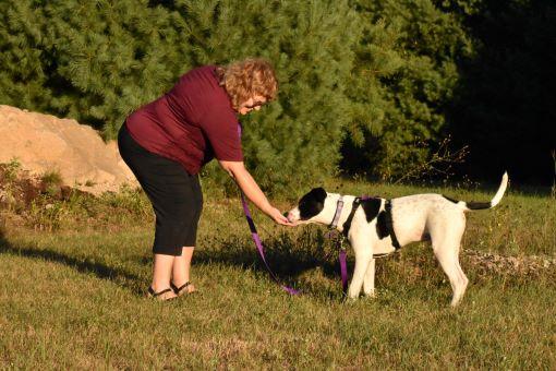 Dog Training Classes in Richmond. RI